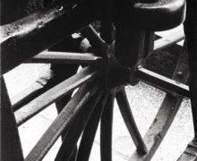Rubén – A Roda do Tempo